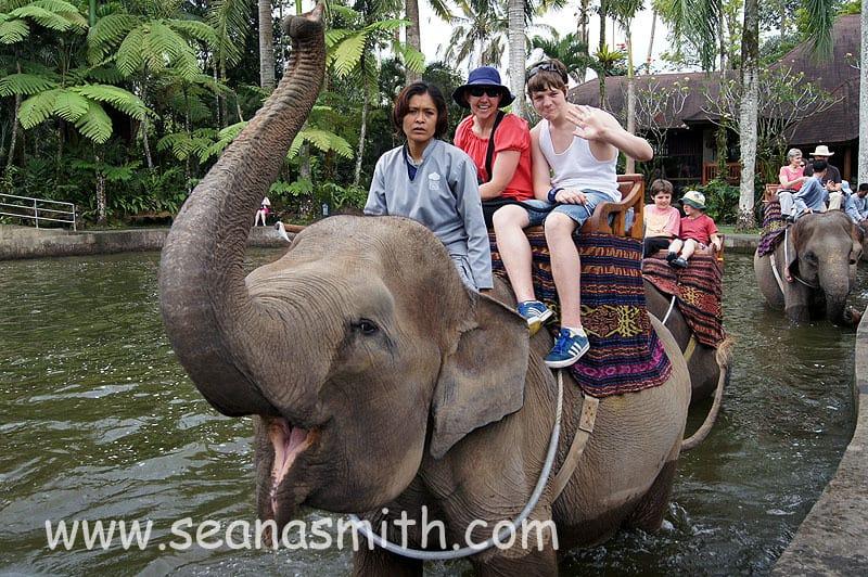 Elephant Safari Park Bali Ubud