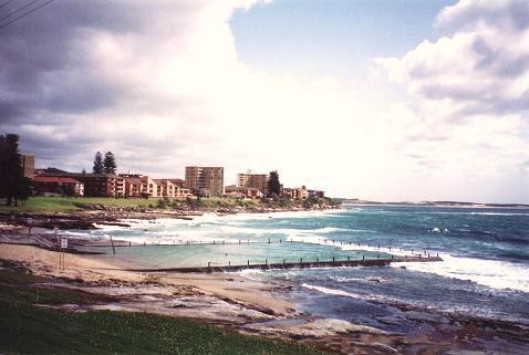 shelly beach cronulla beach views