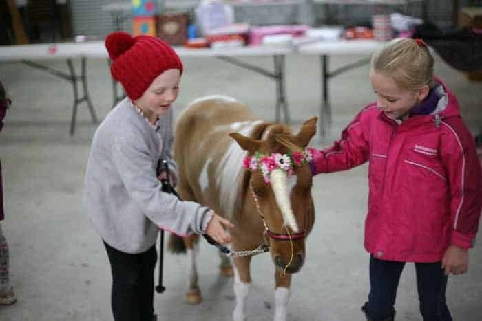 sydney pony rides for kids