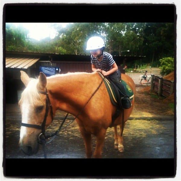 Jamie horse boy