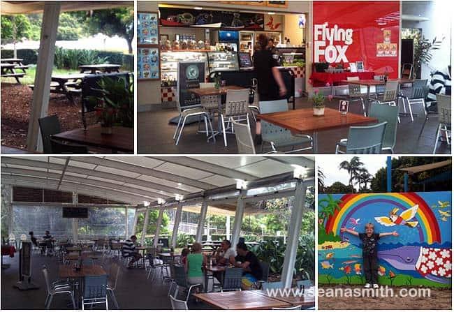 Flying Fox cafe Mona Vale