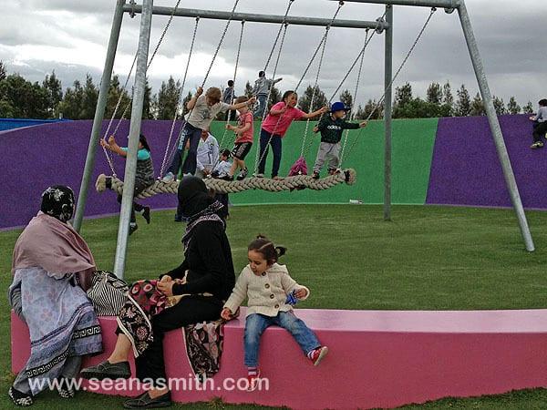 Blaxland Riverside Park rope swing