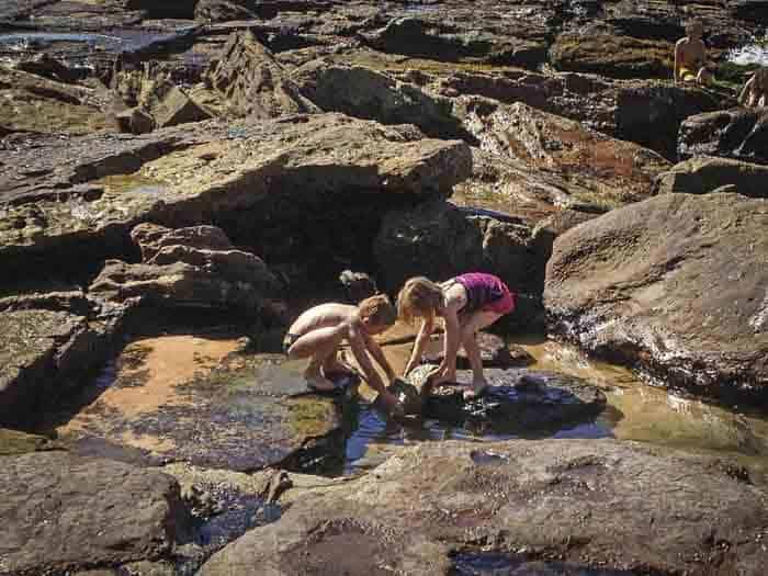 avalon beach rock pool kids playing
