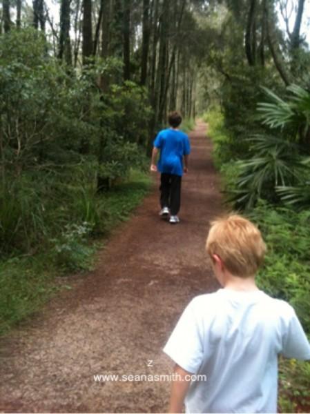 walking along at Warriewood Wetlands