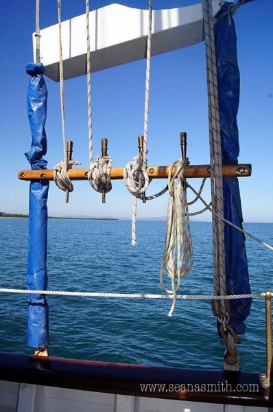 Fiji Island Day trip Whales Tale