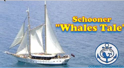 whales tale schooner