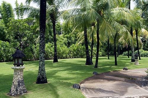 Kids Club Club Med Bali petit club grove
