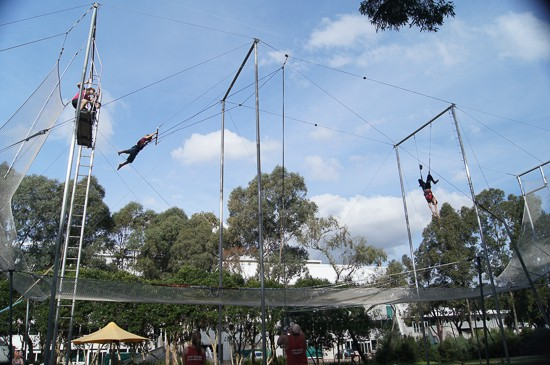 The Flying Trapeze At Circus Arts Sydney Olympic Park