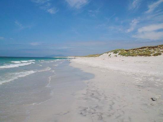 Scottish Beaches-9