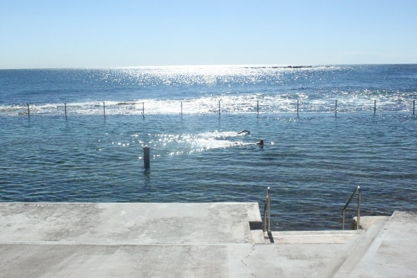 Wylie's Baths coogee laps