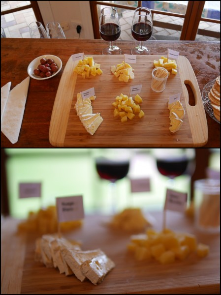 Cheese wine Ascella