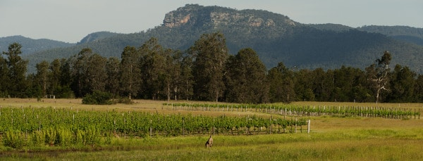 Broke Regional Images Hunter Valley