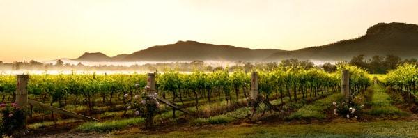 Broke Regional Images Hunter Valley