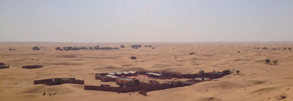 Dubai Sandboard Camel Riding Tour-2