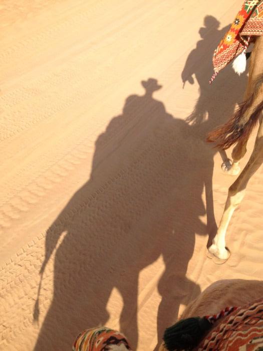 Dubai Sandboard Camel Riding Tour-6