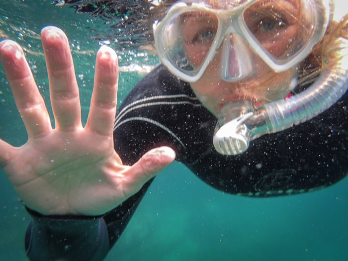 Snorkel trip jervis bay with kids