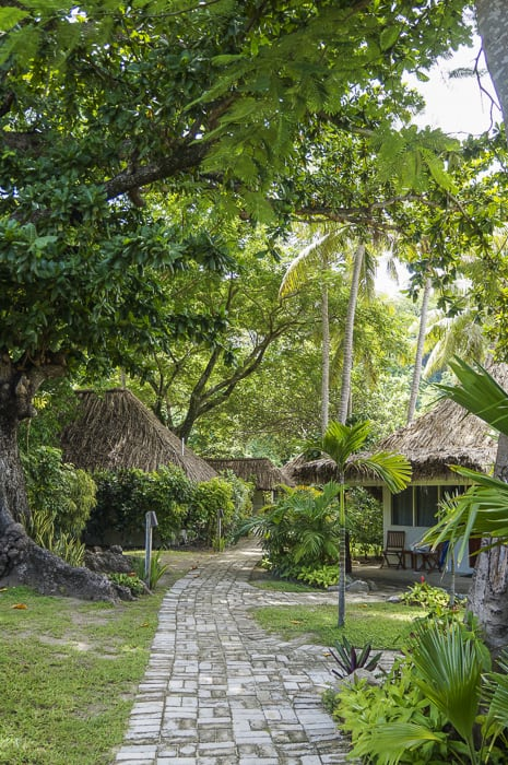 Castaway Island Fiji Family Review_5