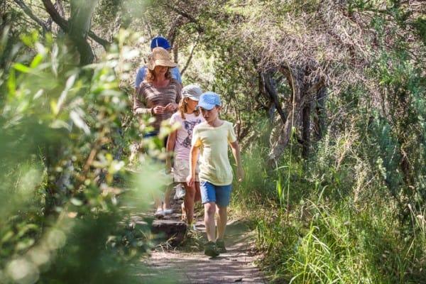 Sydney Family Nature Walks