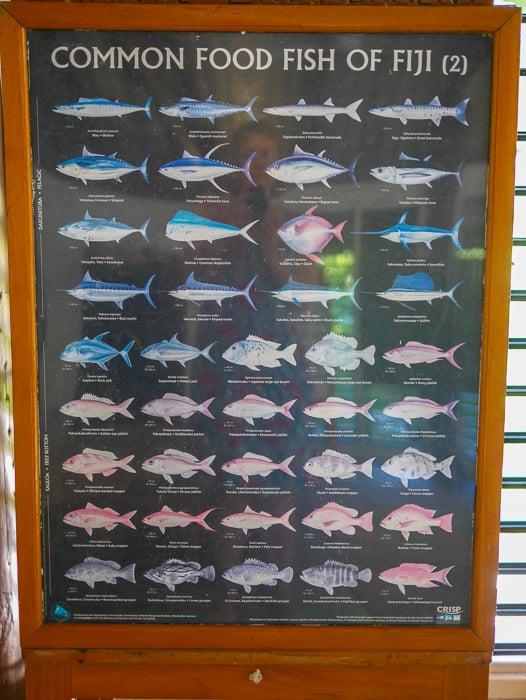 Castaway Island Fiji Kids Club-3