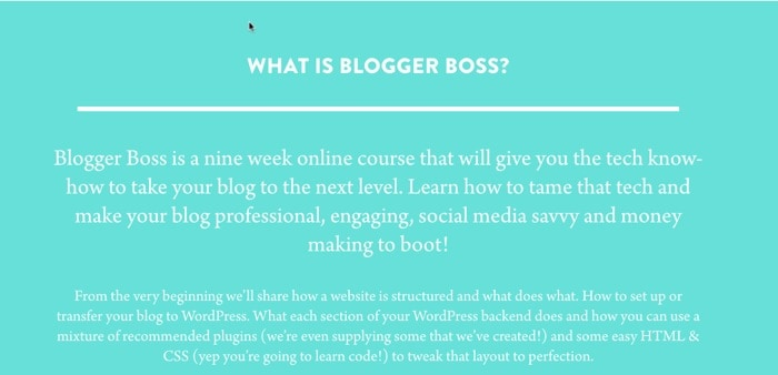 bloggerboss 2