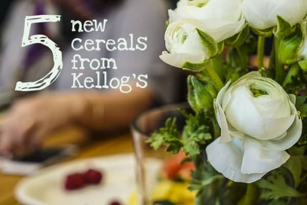Kelloggs new cereals_3 copy copy