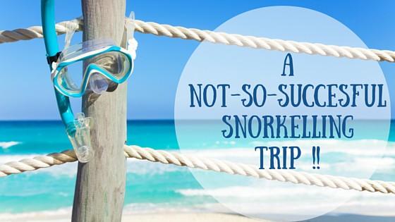 snorkelling trip Jervis bay