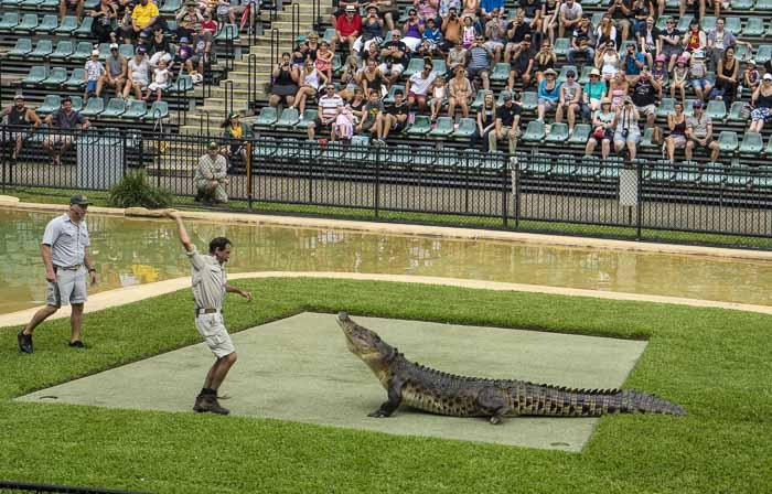 Australia Zoo for kids_1