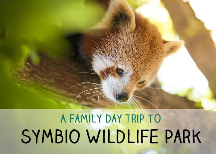 Symbio Wildlife Park family day trip_mini