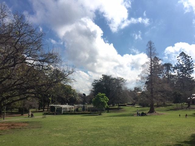Wahroonga Park Playground1