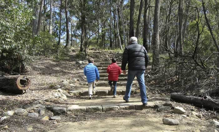 bushwalkmtyork Things To Do In The Blue Mountains with kids