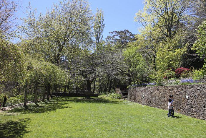 everglades-garden-leura