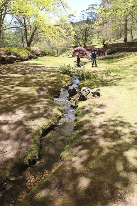 everglades-garden-leura-_4