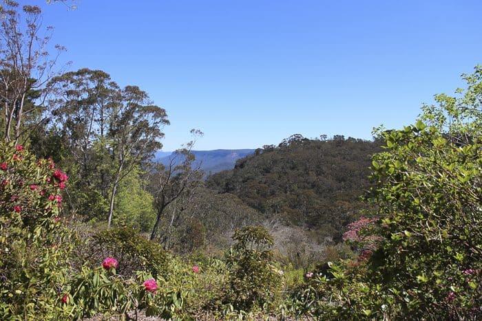 everglades-garden-leura-_5