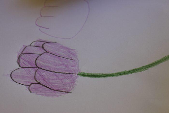 everglades-garden-leura-_8