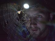spotlight-prowl-whatsonsydney-700-x-530