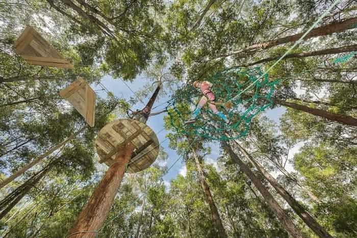 ziplining-cumberland-700