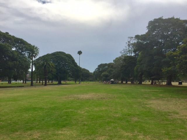 Glebe Foreshore Park
