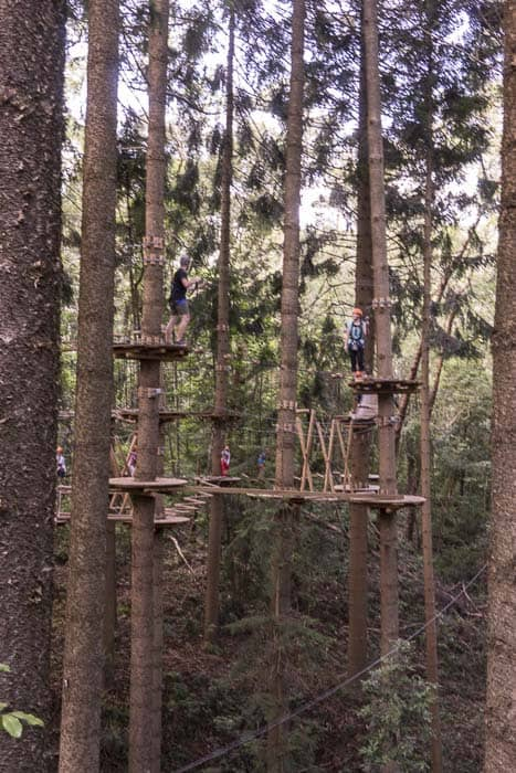 TreeTop Adventure park Sydney The Hills