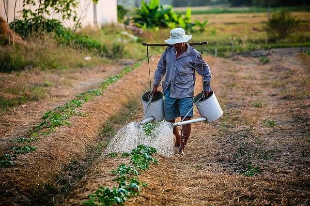 Vietnam holiday farmer rural