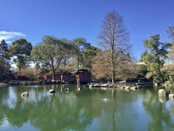 Auburn Botanic Garden Japanese Garden