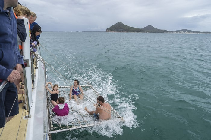 dolphins port stephens with kids things to do
