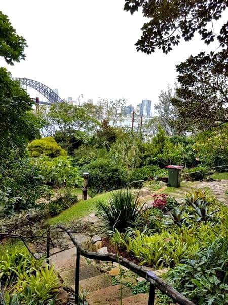 Lush Wendys Secret Garden
