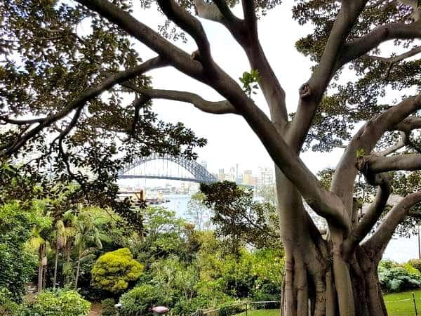 Harbour View Wendys Secret Garden