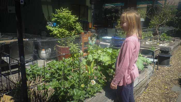cafes in Orange good for kids