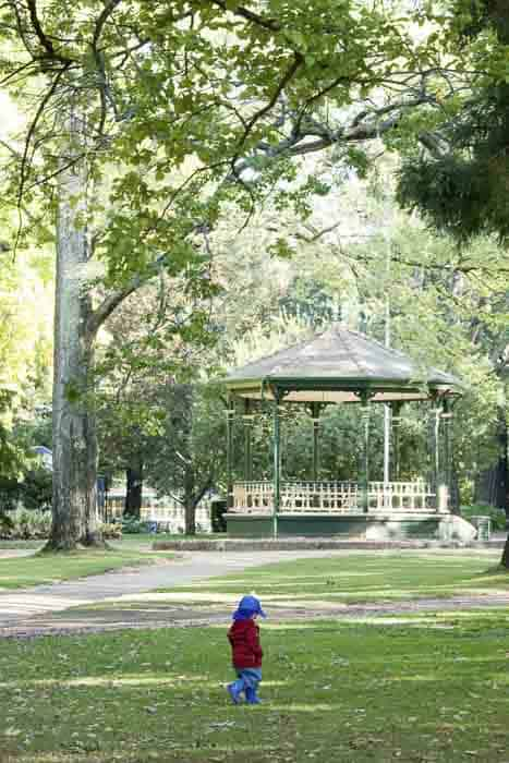 Things to do in Orange with kids Cook Park