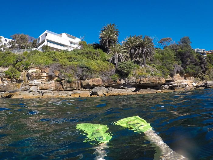Gordons Bay snorkelling Sydney