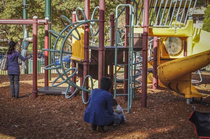 Burwood Park playground slides