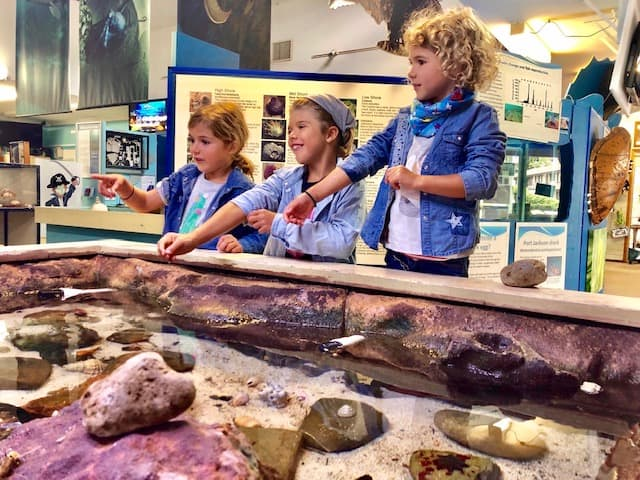a kids activites central coast highlight playing at Marine Centre