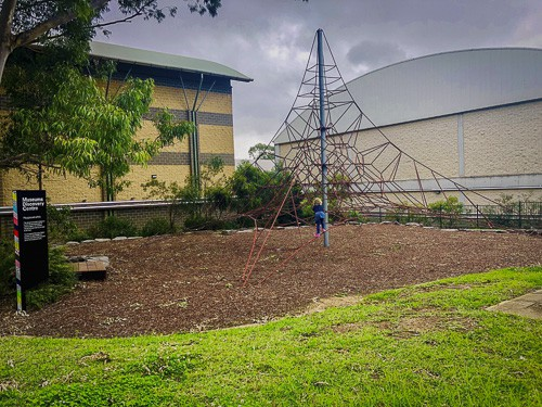 Museums Discovery Centre climbing net