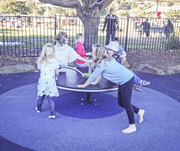 flying fox park roundabout